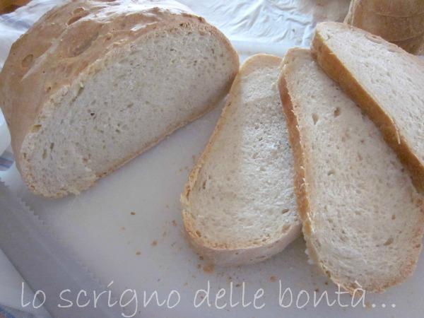 pane bianco con pasta madre 1
