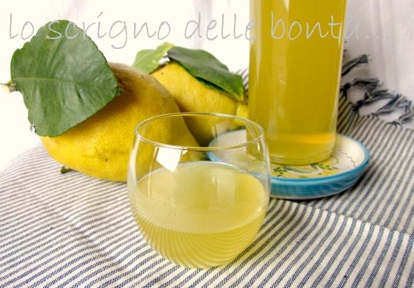 limoncello 1